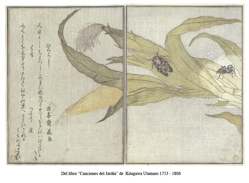 Utamaro 2